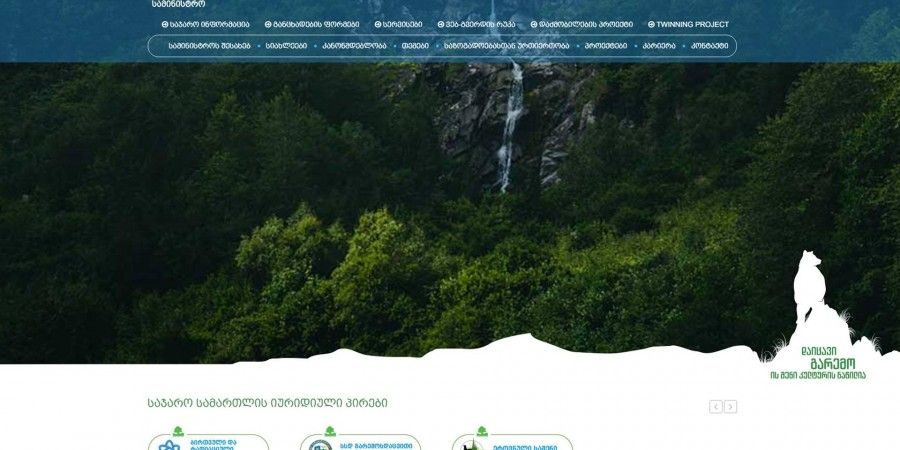 "Creation and development of banners and website for ""Ministry of Environment and Natural Resources Protection of Georgia"""
