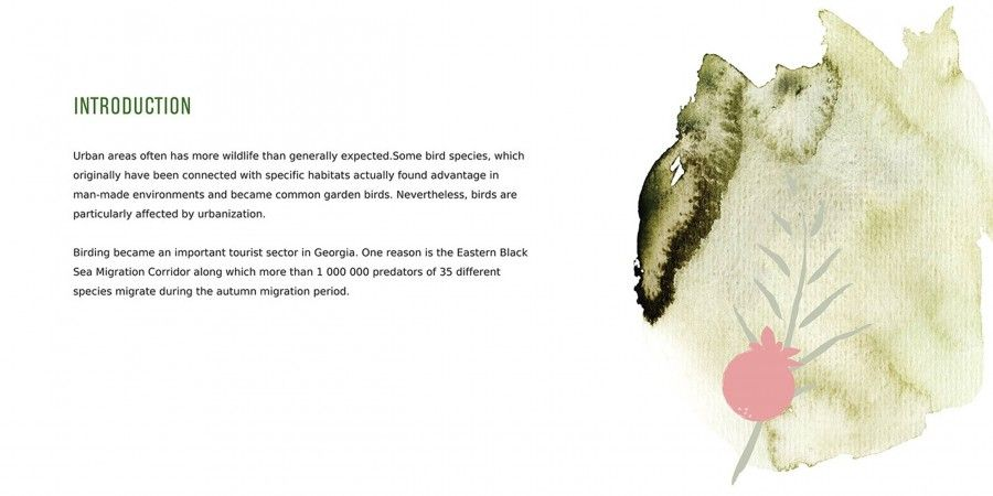 Design of Brochure for Sabuko (Society for the Conservation of Nature)
