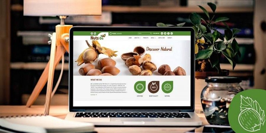 Design and Development of the Website NUTS.ge