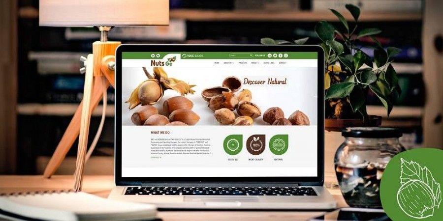 NUTS.ge -ის ვებსაიტის დიზაინი და დაველოპმენტი